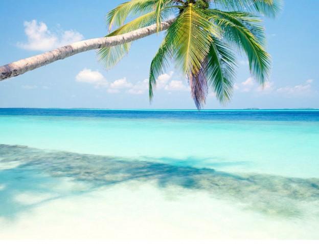 dromen over een tropisch eiland