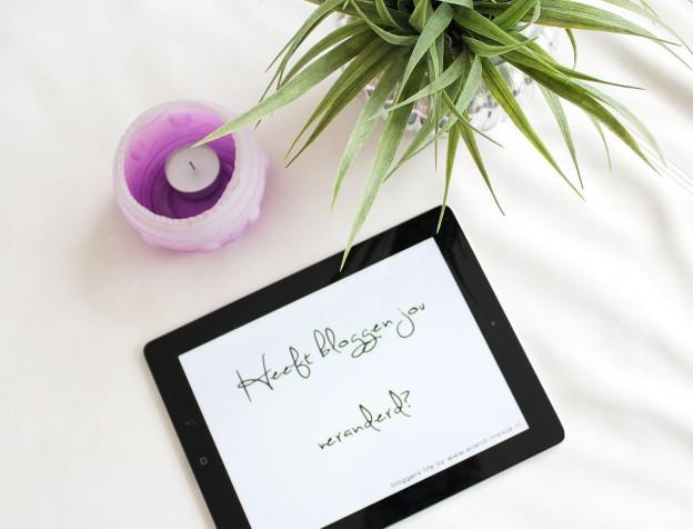 veranderd door bloggen