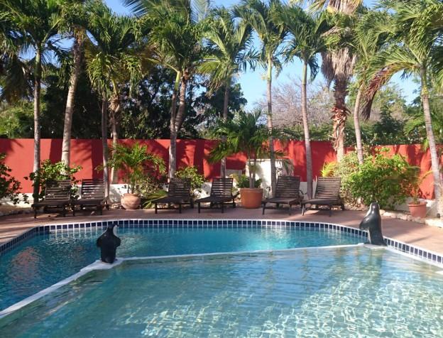 zwembad palmeraie curacao