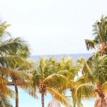 mambo beach boulevard