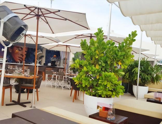 madero restaurant bij mambo beach Curacao