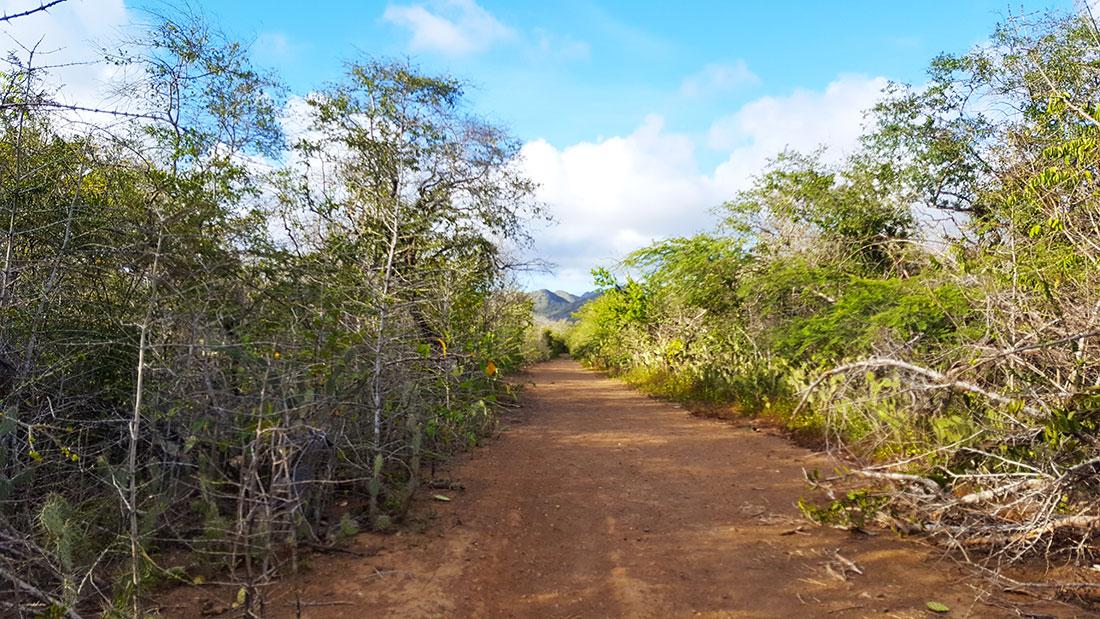 wandelroute naar de blauwe kamer op Curacao