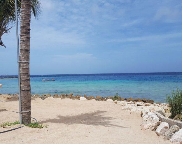 kokos Curacao strand jan thiel