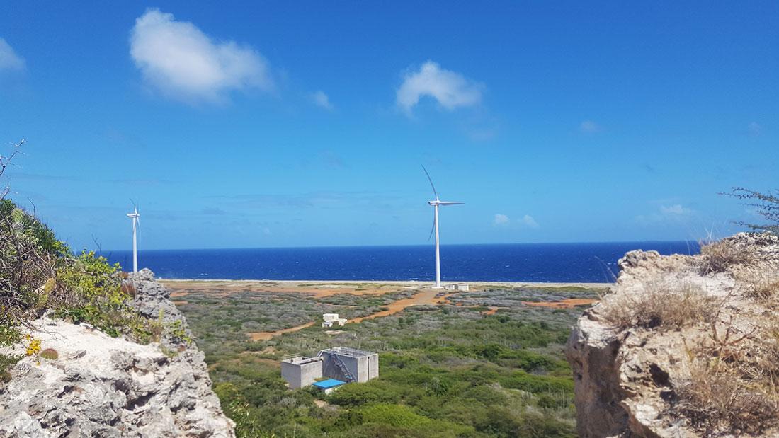 hato vlakte Curacao
