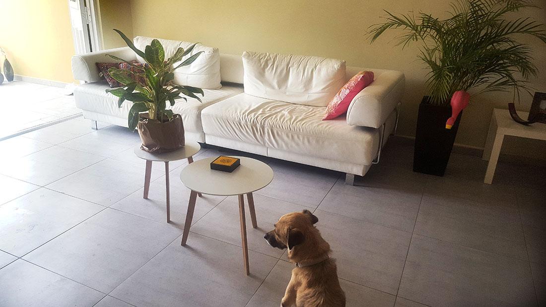 huis curacao